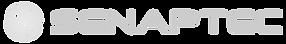 5f17402e7573a502edf24c28_Senaptec_Logo_H