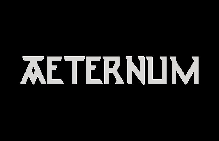 Aeternum Logo landscape plain sa.png