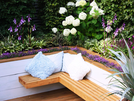 How to get creative with your small garden design - tips from an expert.