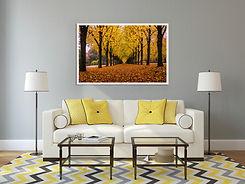 Park Autumn Photography Framed Print
