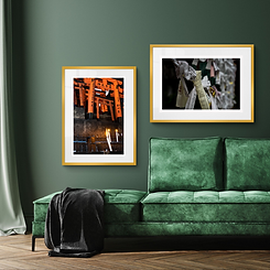 Limited edition Framed Prints Home Decor