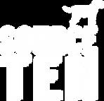 02-Logo-SourceTen-Final-Blanco.png