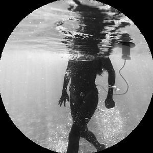 02 elmus aqua.png