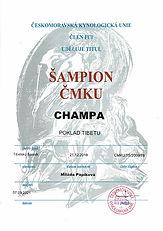 04_Champa_sampion_CMKU.jpg