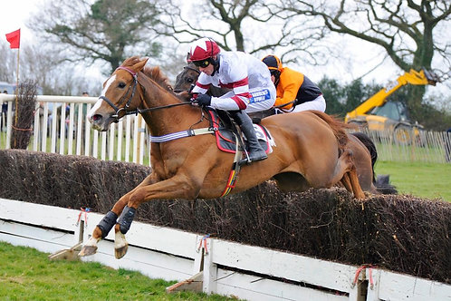 SPOONERS  POINT TO POINT - 3/04/21 at Cherrybrook