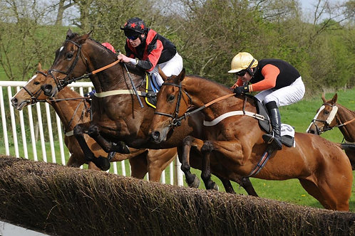 AXE VALE - POINT TO POINT -  28/4/19