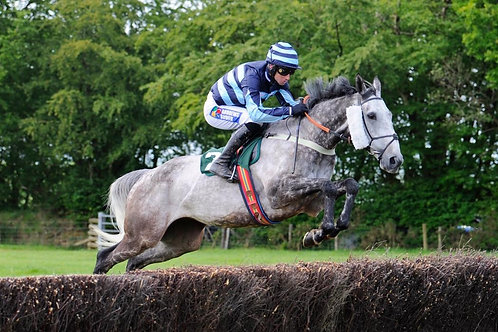 LEDBURY POINT TO POINT - 30/03/21 at Maisemore Park