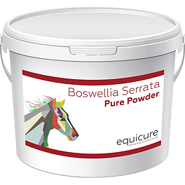 Boswellia_Bucket_Front_600.png