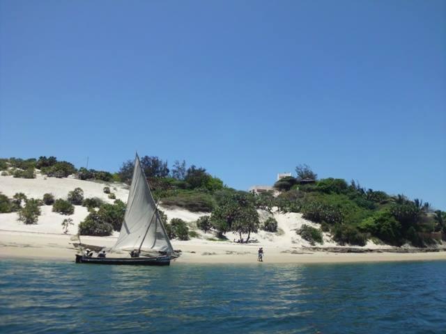 Lamu Dhows