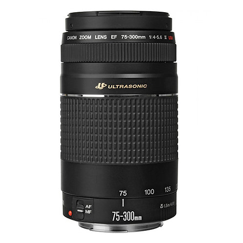 Canon 70-300mm f/4-5.6 USM Lens