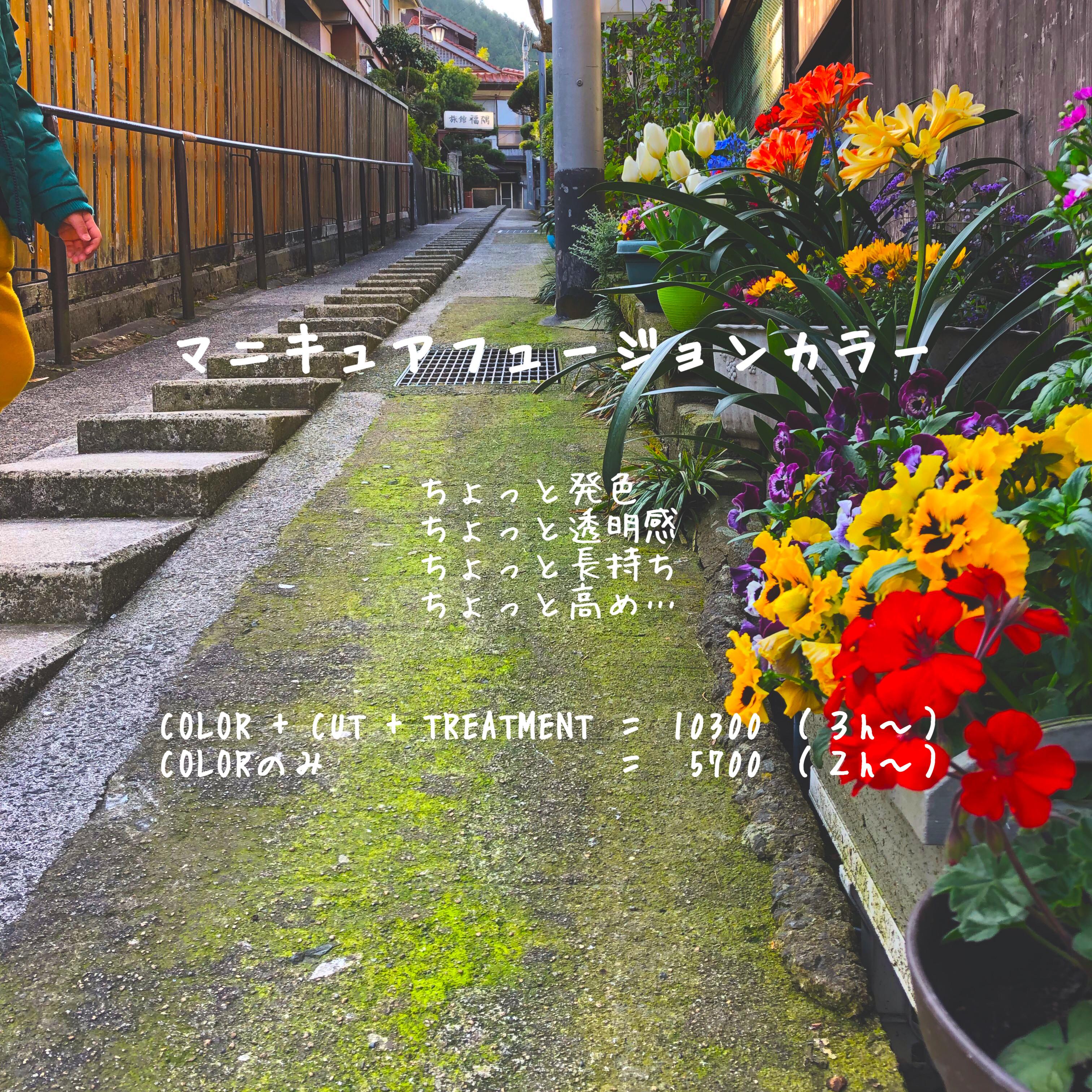 マニキュアフュージョンカラー +  カット  +  トリートメント (全体)
