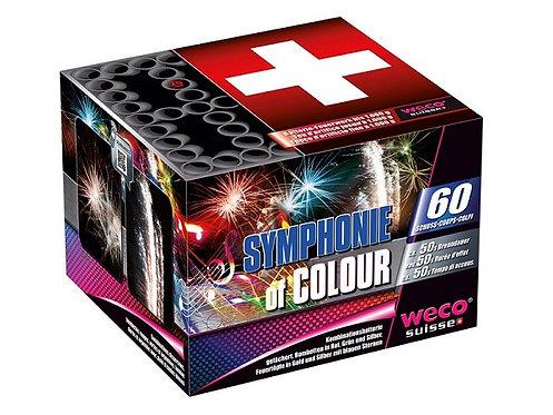 Feuerwerk Batterie Symphonie of Colour