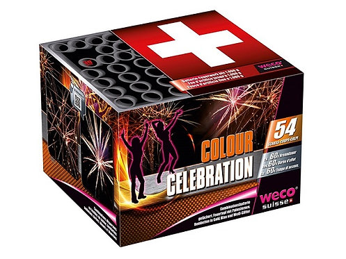 Feuerwerk Batterie Colour Celebration