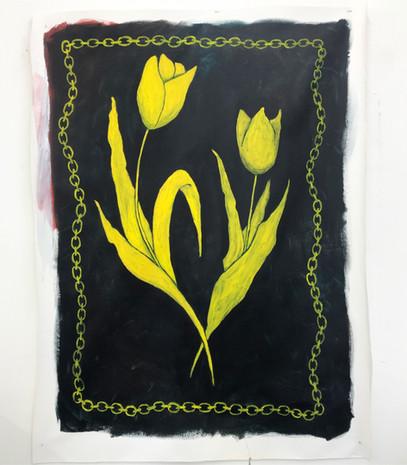 Tulip Pair