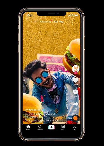 burger flex.png
