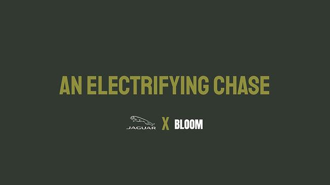 Bloom Campaign #3 - Jaguar.jpg