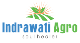 Indrawati-Agro-LOGO-SMALL1_edited.png