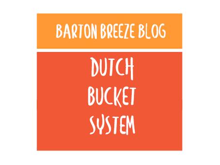 Dutch Bucket System