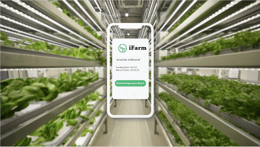 iFarm-Top-Homepage.png