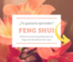 Feng Shui gratuito