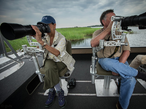 African Wildlife Photography Workshop/Safari, Chobe, Botswana