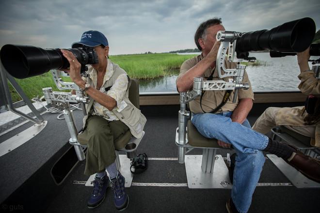 Photography in Action - The Chobe, Botswana