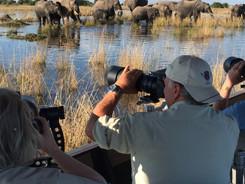 Chobe River, African Wildlife Photography Workshop/Safari, Chobe, Botswana