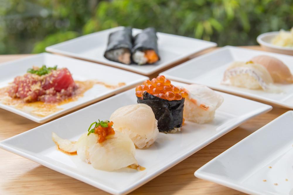 Omakase Nigiri Tuna Sashimi Crab Toro Handroll Halibut Scallop Ikura Salmon Eggs Shrimp Prawn Ebi Red Snapper Yellowtail Hamachi