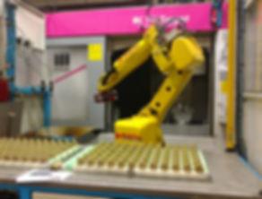 Lofthouse, Lofthouse Manufacturing, Transfer Machine, Automation