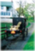 Adirondack outdoor furniture, Dutch Harness Horses