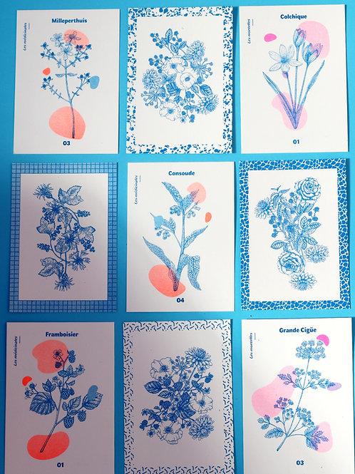 Lot de 4 cartes postales by l'artiste Das Mädchen