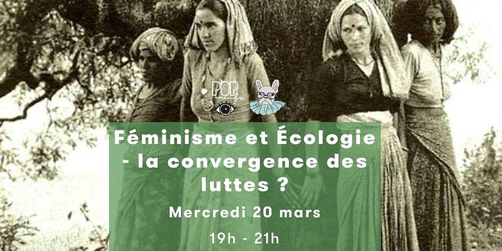 Féminisme et Ecologie - la convergence des luttes ?