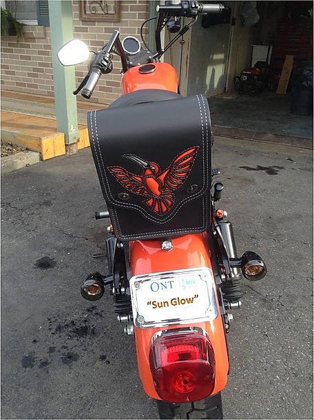 Custom sissy bar bag with hummingbird design