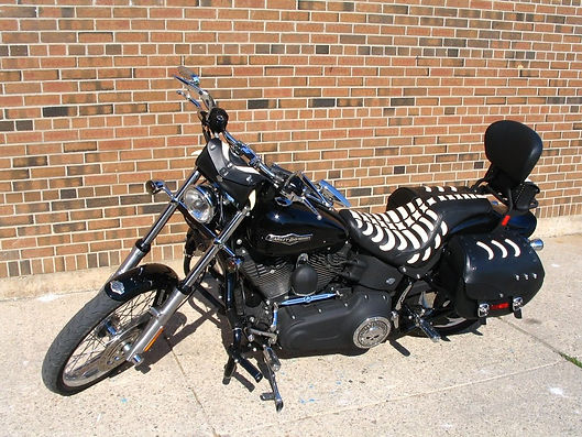 Custom motorcycle seat covers