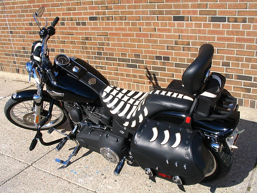 Custom motorcycle seat cover