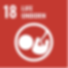 E-SDGs_18 copy.png