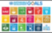 800px-Sustainable_Development_Goals.jpg