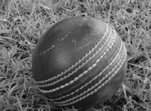 cricket ball_edited.jpg