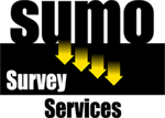 Sumo Survey.png
