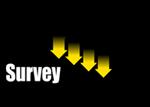 Sumo Survey.png