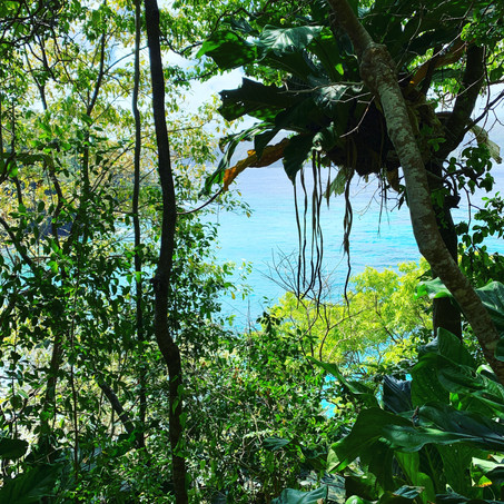 Little Tobago