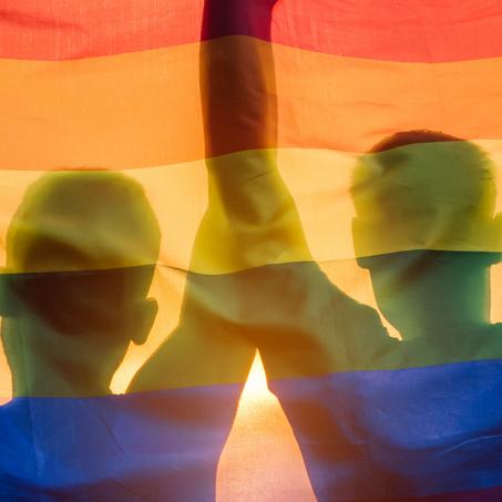 Nonfiction - LGBTQ+ Author