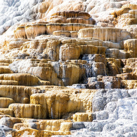Mammoth Hot Springs Lower Terraces