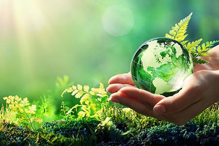 Sustentabilidade e Gestão de Marcas