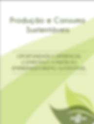 book_5_Joana_Bicalho_Felix_Rede_comunica