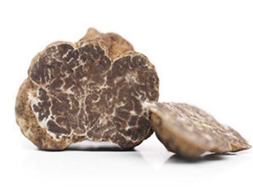 Truffes fraîches Bianchetto 100 gr.