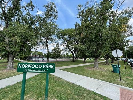 Real-Estate-Agency-near-Norwood-Park.jpg