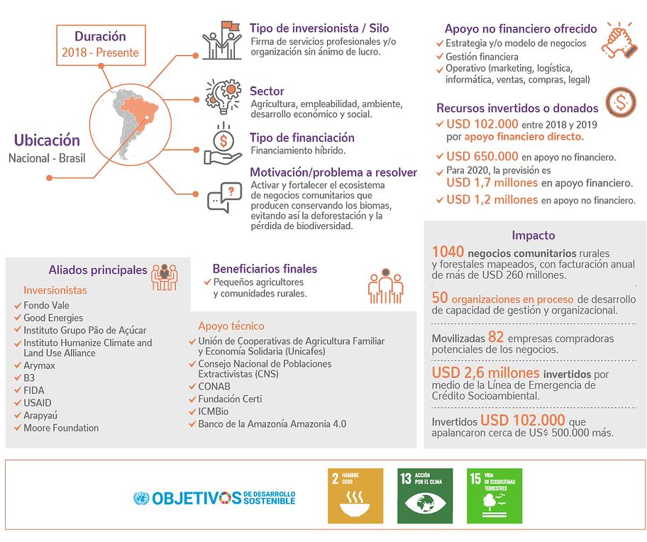 infografia_es.png