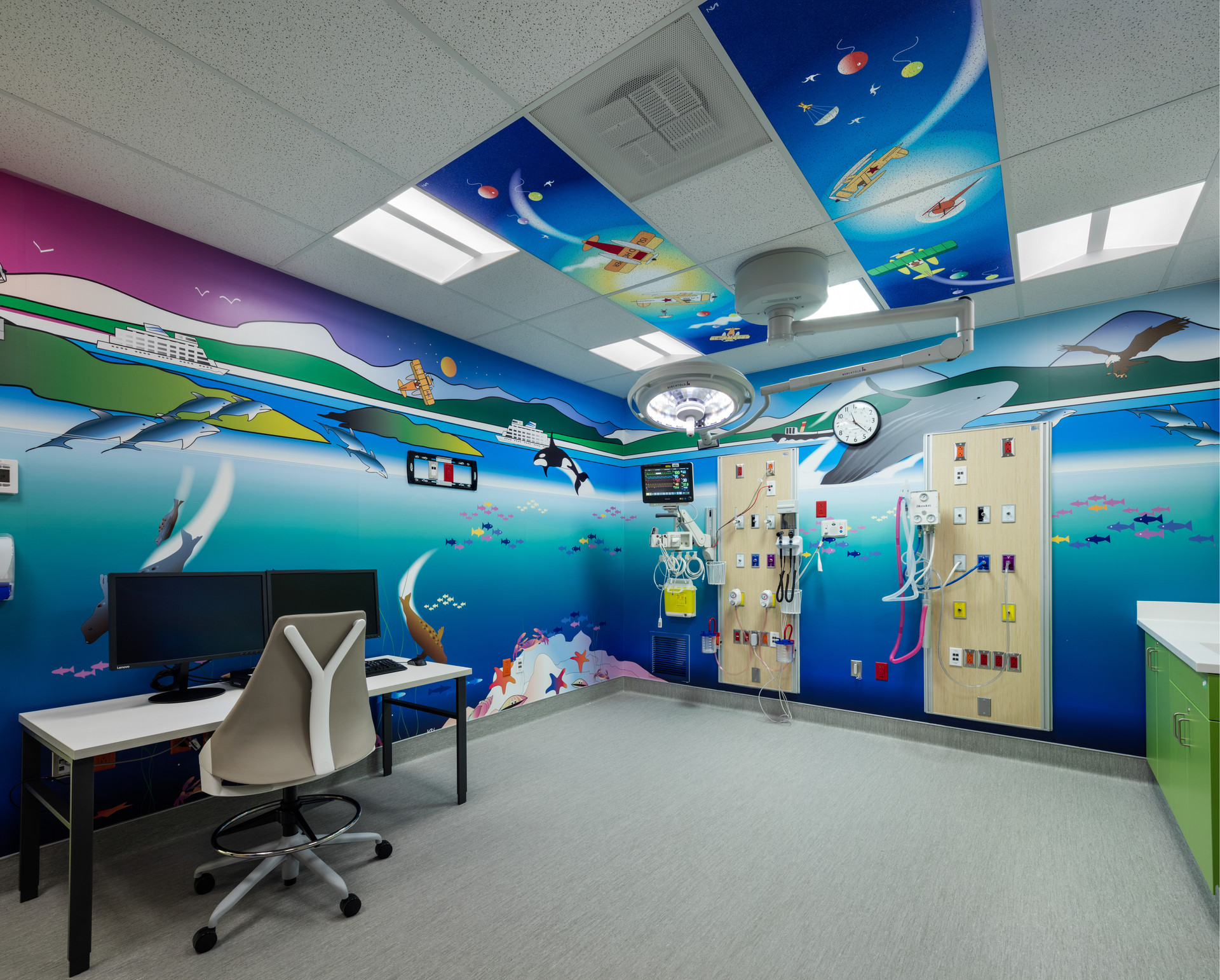 Wall and Ceiling Murals