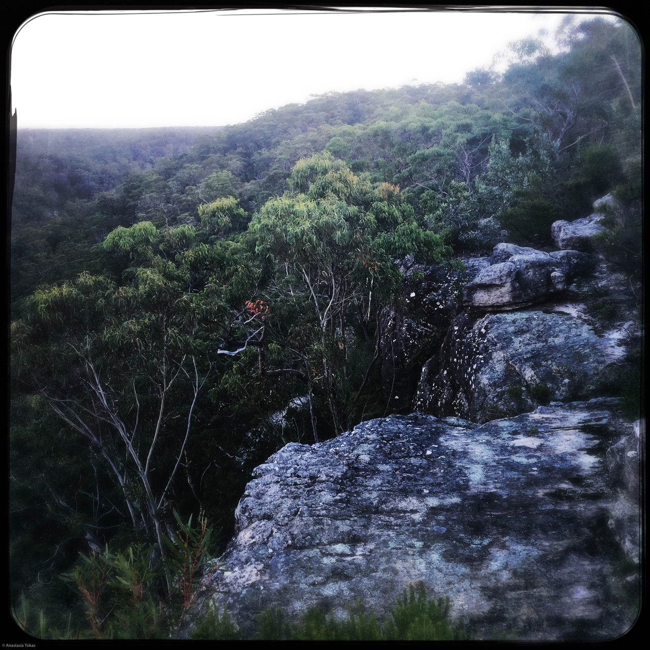 Dharawal O'Hares Creek Lookout